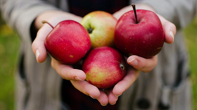 Applefest Friends of Beaverdams Church Thorold