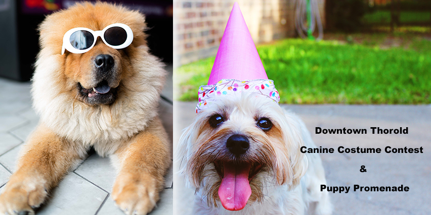 Canine Costume Contest and Promenade Downtown Thorold