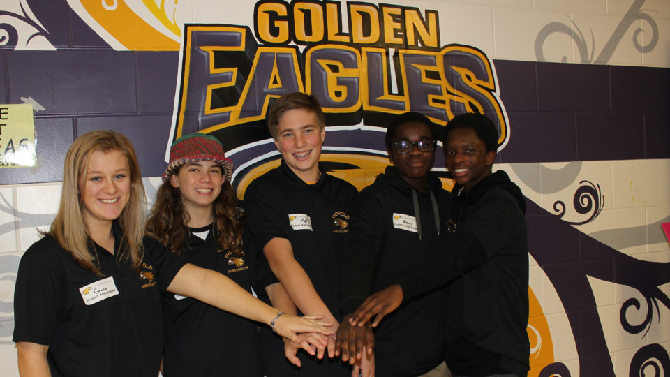 Thorold Secondary School student volunteers teamwork
